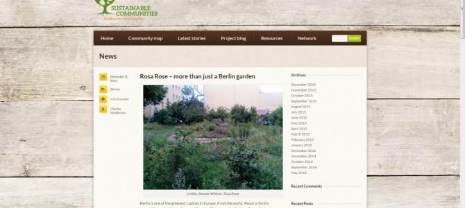 Rosa Rose Artikel bei Sustainable Communities