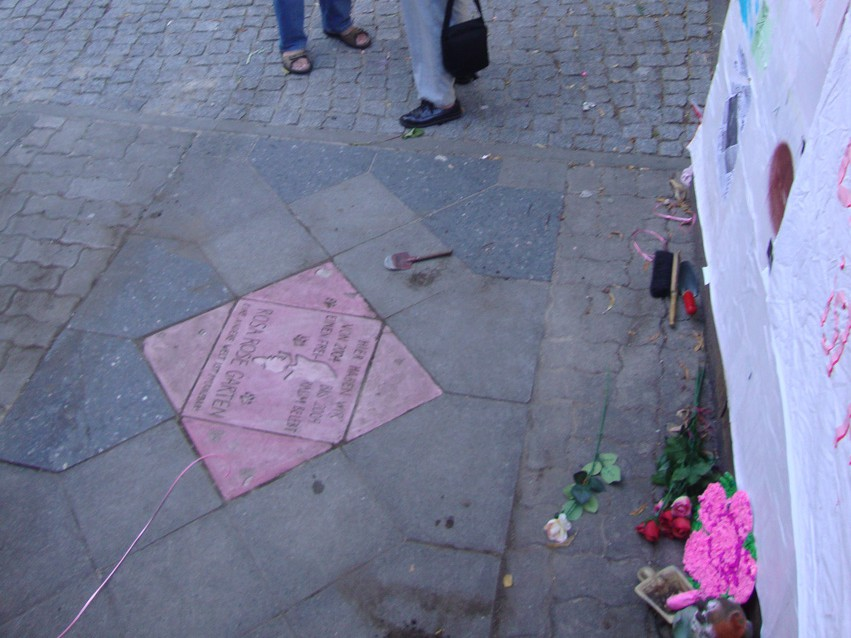 Rosa Rose Gedenksteinlegung