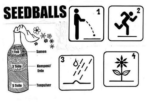 Seedballs bombs
