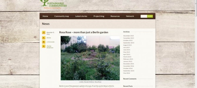 Rosa Rose Artikel bei Sustainable Communities